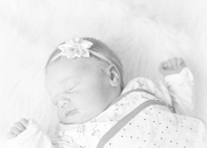 Wat kost een newborn fotoshoot